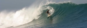 NEW: Surf Guiding - Surfari