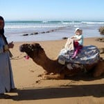 camel ride at beach