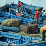 fishermen working essaouira harbor