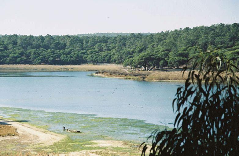 lagoa-de-algarve