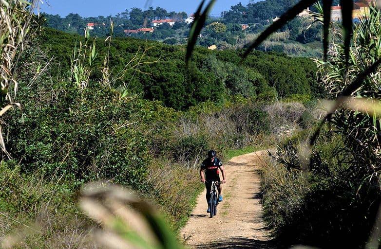 mountain biking and yoga