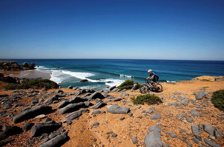 mountain biking trail coastline