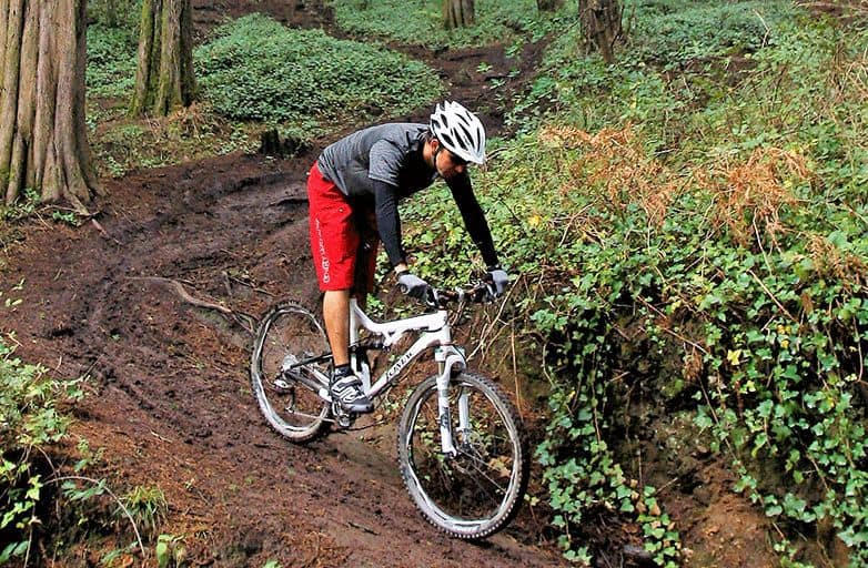 mountainbiking-sintra-forrest-sitePC2-opt-fin